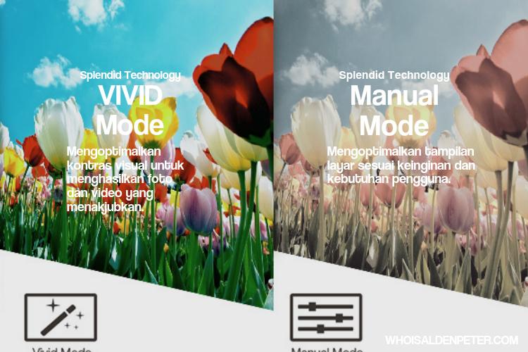 vivid mode dan manual mode